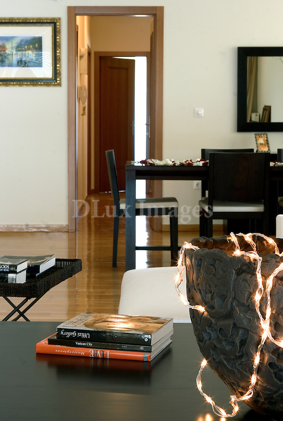 contemporary decorations and furniture
