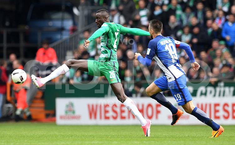 FUSSBALL     1. BUNDESLIGA      31. SPIELTAG    SAISON 2016/2017  SV Werder Bremen - Hertha BSC Berlin                          29.04.2017 Lamine Sane (li, SV Werder Bremen) gegen Vedad Ibisevic (re, Hertha BSC Berlin)