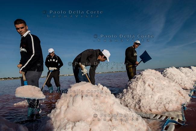 Camargue-Aigues Mortes. Le vasche artificiali dove si raccoglie il Fleur de sal e caratterizzate dauna colorazione rosa. Nella foto la raccolta del Fleur de sal che avviene in luglio. I salinai rompono  a mano la crosta salina che viene portata verso riva formando dei cumuli di sale.