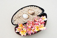 Seychelles: half Coco de Mer filled with sand, shells and petals