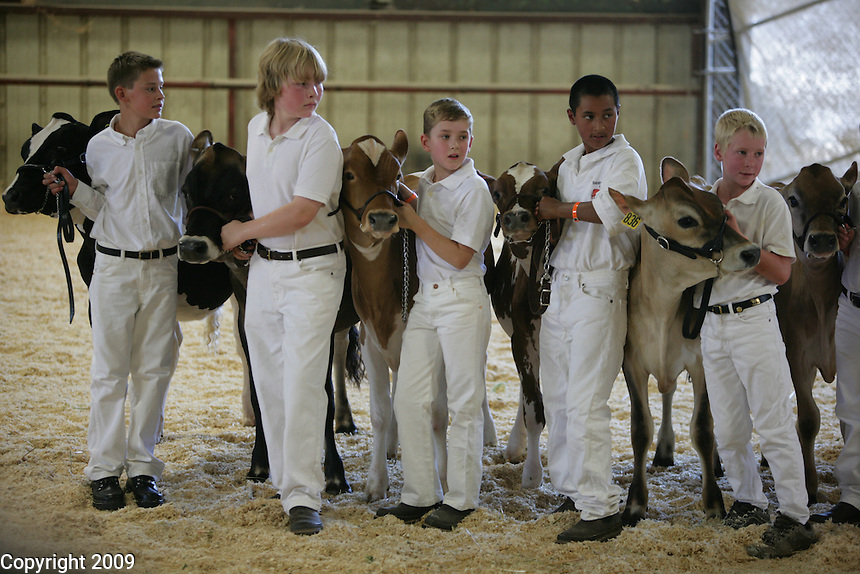 left to right-Tyler Robinson, Zach Steensma, Travis Lenssen, Pedro Chavez, Luke Wolfisberg-Novice Fitting and Showing of Jersey calves. .NW Washington Fair. August 18, 2009 PHOTOS BY MERYL SCHENKER