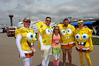 Sponge Bob fans.