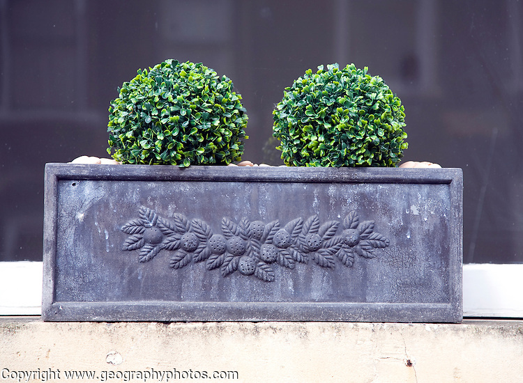 Attractive window box plants, Bath