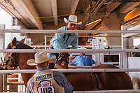 Usa,Wyoming, Cheyenne,rider cowboy prepare his horse to enter he competitiion  at Frontier days 2017