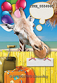 Isabella, CUTE ANIMALS, LUSTIGE TIERE, ANIMALITOS DIVERTIDOS, humor, paintings+++++,ITKE055406C,#ac# funny animals