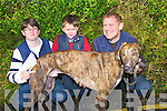 "READY: Eileen Mulvihill,Thomas and Tom Lynch (Trainer) (Ballylongford) getting their dog ""Lislaughtin Mick"" ready for the Final of the Bill McCarthy Memorial Cup at the Abbeydorney Coursing on Sunday."