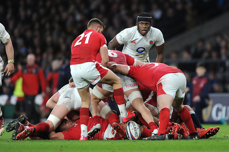 Maro Itoje of England looks on during as Rhys Webb of Wales prepares to send up a box kick during the Guinness Six Nations match between England and Wales at Twickenham Stadium on Saturday 7th March 2020 (Photo by Rob Munro/Stewart Communications)
