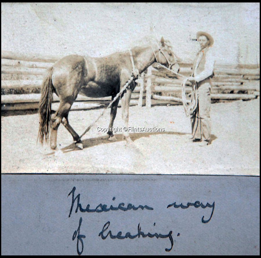BNPS.co.uk (01202 558833)<br /> Pic: FlintsAuctions/BNPS<br /> <br /> Breaking horses the 'Mexican way'.<br /> <br /> Unseen album reveals the life of a cowboy in the real wild west...<br /> <br /> Fascinating previously unseen early photos of cowboys in the Wild West have come to light 130 years later.<br /> <br /> They show life on the ranches of Colorado and New Mexico in the vast expanses of the south west US in the 1880s.<br /> <br /> One dramatic image captures the thrilling moment a group of cowboys ride towards the camera with hats held aloft.<br /> <br /> The photos are thought to have been taken by a British farmhand who travelled Stateside in the late 19th century to earn a living.