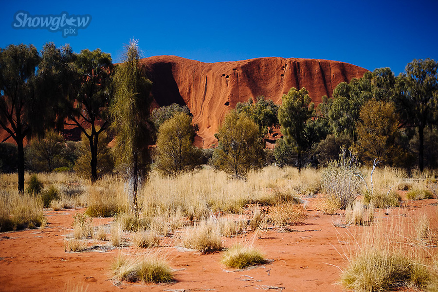 Image Ref: CA662<br />