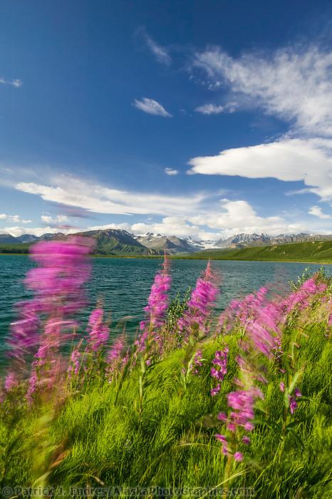Summit Lake, along the Richardson Highway in isabel pass, Gakona Glacier in the distance, Alaska mountain range.