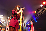 Rubblebucket performs at The Wakarusa Music festival