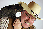 A cat being playful with a cowboy chewing on his hat string