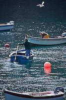 Europe/France/Bretagne/29/Finistère/ Cleden-Cap-Sizun: Retour de pêche à la Cale de la  Pointe de Brézellec
