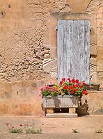 Summer Sun, Provence