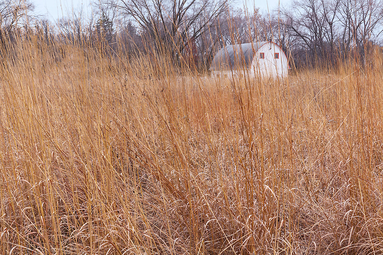 Schulenberg Prairie and a barn in late fall at The Morton Arboretum; DuPage County, IL