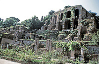 Palatine Hill viewed from the Roman Forum, Rome, Italy