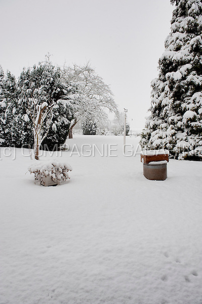 Gardens in Bierbeek covered in snow at the end of December (Belgium, 20/12/2010)