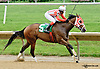 Put It Back Martha winning at Delaware Park racetrack on 6/5/14