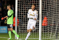 Sunday, 28 November 2012<br /> Pictured: Michu of Swansea celebrating his opening goal<br /> Re: Barclays Premier League, Swansea City FC v West Bromwich Albion at the Liberty Stadium, south Wales.