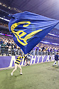 SEATTLE, WA - September 07: Cal cheer members wave a Cal flag during the college football game between the Washington Huskies and the California Bears on September 07, 2019 at Husky Stadium in Seattle, WA. Jesse Beals / www.Olympicphotogroup.com