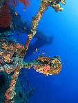 Orchid Island (蘭嶼), Taiwan -- Ba Dai Ship Wreck (八代沉船)