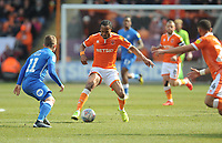 Blackpool's Nathan Delfouneso under pressure from Peterborough United's Louis Reed<br /> <br /> Photographer Kevin Barnes/CameraSport<br /> <br /> The EFL Sky Bet League One - Blackpool v Peterborough United - Saturday 13th April 2019 - Bloomfield Road - Blackpool<br /> <br /> World Copyright &copy; 2019 CameraSport. All rights reserved. 43 Linden Ave. Countesthorpe. Leicester. England. LE8 5PG - Tel: +44 (0) 116 277 4147 - admin@camerasport.com - www.camerasport.com