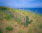 Cape Cod National Seashore, MA <br /> Fence line in the dune grasses above Marconi Beach on Cape Cod