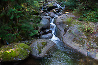 Marten Creek, Taylor River Road, Mt. Baker Snoqualmie National Forest, Washington, US