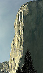 EL CAPITAN IN YOSEMITE NATIONAL PARK 3-11-2004.PHOTO BY © FITZROY BARRETT 2004