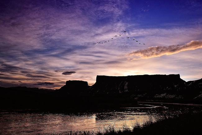 Geese fly by at sunrise along the Colorado River in Moab, UT