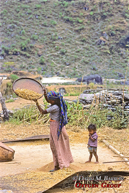 Woman Drying Grains