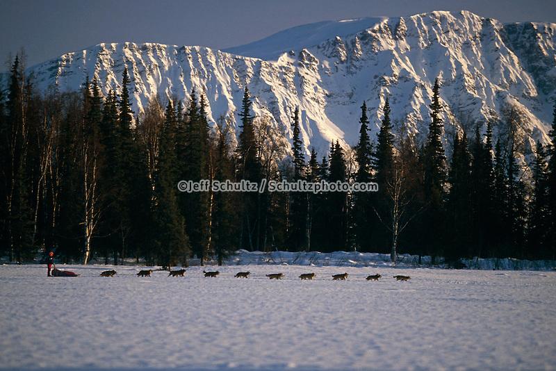 J.Austin near Finger Lake AK Range Iditarod '91 IN AK