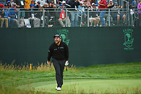 Shane Lowry (IRL) chips in for birdie on 17 during round 4 of the 2019 US Open, Pebble Beach Golf Links, Monterrey, California, USA. 6/16/2019.<br /> Picture: Golffile | Ken Murray<br /> <br /> All photo usage must carry mandatory copyright credit (© Golffile | Ken Murray)