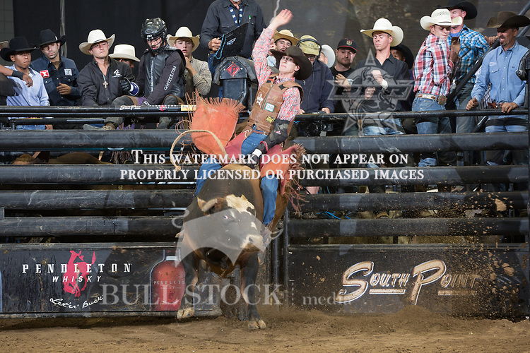 Devin Hager attempts to ride Land Dolphin ( Mike Miller Bucking Bulls ) during the first round of the PBR Real Time Pain Relief Velocity Tour event in Rochester, NY - Photo by Andre Silva