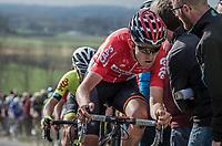Tiesj Benoot (BEL/Lotto-Soudal) on top of the Paterberg<br /> <br /> 72nd Dwars Door Vlaanderen (1.UWT)<br /> 1day race: Roeselare › Waregem BEL (203.4km)