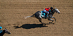 September 5, 2020: Rushie, #9, ridden by Javier Catellano, wins the Pat Day Mile on Kentucky Derby Day. The races are being run without fans due to the coronavirus pandemic that has gripped the world and nation for much of the year, with only essential personnel, media and ownership connections allowed to attend at Churchill Downs in Louisville, Kentucky. John Voorhees/Eclipse Sportswire/CSM