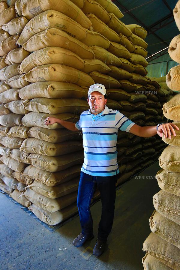 Bresil, etat Minas Gerais, Muzambinho (Nord de Sao Paulo), 30 octobre 2012.<br /> <br /> Societe Stockler, negociant-exportateur de cafe, partenaire de Nespresso dans le cadre du programme AAA.<br /> Dans l'entrepot, portrait d'un representant de la societe Stockler, entre deux piles de sacs de cafe.<br /> Reportage les Chants de cafe_soul of coffee, realise sur les acteurs terrain du programme de developpement durable Triple AAA de Nespresso.<br /> <br /> Brazil, Minas Gerais, Muzambinho, (North of Sao Paulo), October 30, 2012 <br /> <br /> Stockler, Commercial Coffee Exporter, Partner of Nespresso AAA Sustainable Quality Program.<br /> A portrait of a representative from Stockler standing between stacks of bags of coffee in the warehouse. <br /> Assignment: les Chants de cafe_ Soul of Coffee, implemented on the fields of Nespresso&rsquo;s AAA Sustainable Quality Program.