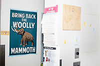 "A sign reading ""Bring Back the Woolly Mammoth"" is seen in George Church's Lab in the New Research Building at Harvard Medical School's Department of Genetics in Boston, Massachusetts, USA, on Tues., Sept. 5, 2017. Church has said that geneticists are two years away from synthetically creating or otherwise bringing back a woolly mammoth through targeted gene editing techniques. The race to create a woolly mammoth has recently been chronicled in the book ""Woolly: The True Story of the Quest to Revive One of History's Most Iconic Extinct Creatures,"" written by Ben Mezrich and soon to be a major motion picture."