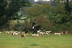 Duke of Beauforts Hunt. Fox hunting with hounds Gloucestershire England. Joint Master Captain Ian Farquhar
