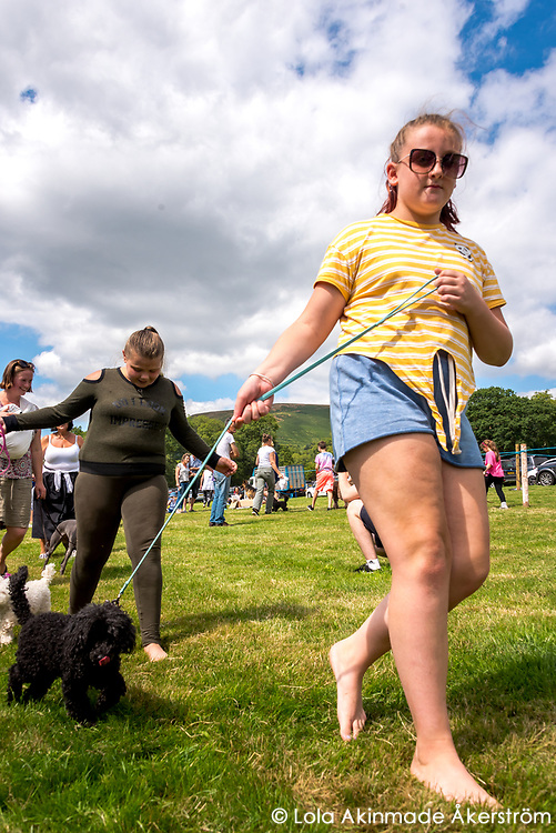 Locals show off their dogs in the companion dog show
