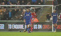 Bolton Wanderers' Luke Murphy looks dejected after Swansea City's second goal, scored by Bersant Celina (not in picture)<br /> <br /> Photographer Kevin Barnes/CameraSport<br /> <br /> The EFL Sky Bet Championship - Swansea City v Bolton Wanderers - Saturday 2nd March 2019 - Liberty Stadium - Swansea<br /> <br /> World Copyright © 2019 CameraSport. All rights reserved. 43 Linden Ave. Countesthorpe. Leicester. England. LE8 5PG - Tel: +44 (0) 116 277 4147 - admin@camerasport.com - www.camerasport.com
