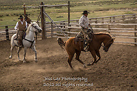 Crow hopper Cowboys working and playing. Cowboy Cowboy Photo Cowboy, Cowboy and Cowgirl photographs of western ranches working with horses and cattle by western cowboy photographer Jess Lee. Photographing ranches big and small in Wyoming,Montana,Idaho,Oregon,Colorado,Nevada,Arizona,Utah,New Mexico.