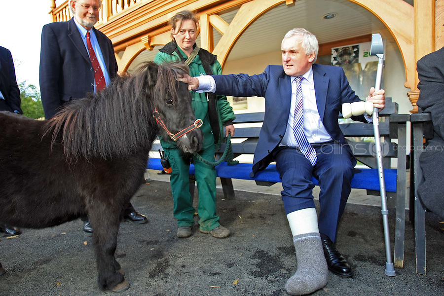 03/11/'08 Former Taoiseach, Bertie Ahern and Zoo Director, Leo Oosterweghel  and Jenny Darley, Zoo Keeper with Beaou the Shetland Pony  pictured at Dublin Zoo this afternoon where he unveiled the new revamped Haughton House. The building now features an interactive Learning and Discovery centre for children of all ages, a state of the art lecture room and a first floor balcony that overlooks the elephant habitat....Picture Collins, Dublin, Colin Keegan.
