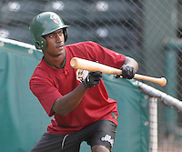 May 27, 2008: Outfielder Richard Pena (27) of the Savannah Sand Gnats, Class A affiliate of the New York Mets, prior to a game against the Greenville Drive at Fluor Field at the West End in Greenville, S.C. Photo by:  Tom Priddy/Four Seam Images