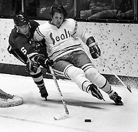 Seals Len Frig, Penguins #5 Barry Wilkins 1976 photo/Ron Riesterer