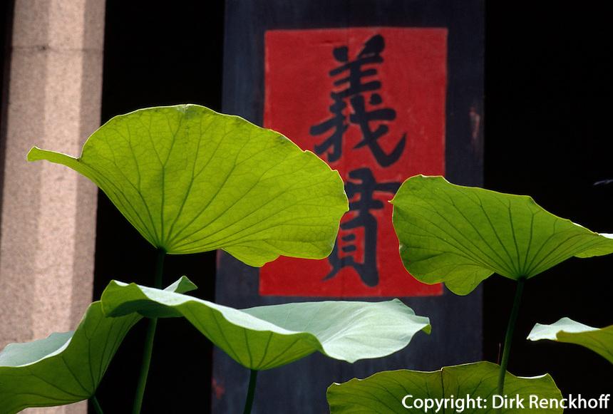 buddhistischer Lotostempel (Lin Fong Miu ) in Macao, China