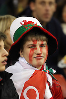 Pictured: A Wales supporter Saturday 29 November 2014<br />