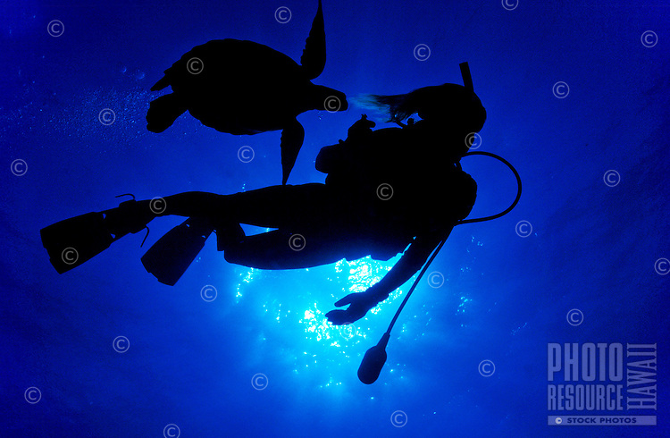 A woman scuba diver and a Green Sea Turtle in silhouette swim in the clear blue waters of Hawaii. Hawaiian name  for sea turtle is Honu.
