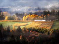 Hood River Valley with orchards in fall colors. Oregon