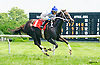 Zofia's Prayer winning at Delaware Park on 7/21/16